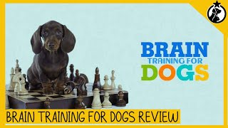 Brain Training for Dogs Review: Everything You Need to Know