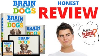 BRAIN TRAINING FOR DOGS REVIEW 2021 BRAINTRAINING4DOGS MY HONEST OPINION