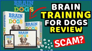 Brain Training For Dogs Review 😲 BEWARE! Brain Training For Dogs Adrienne Farricelli EXPOSED⚠️